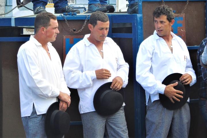 Бикоборци от остров Терсейра
